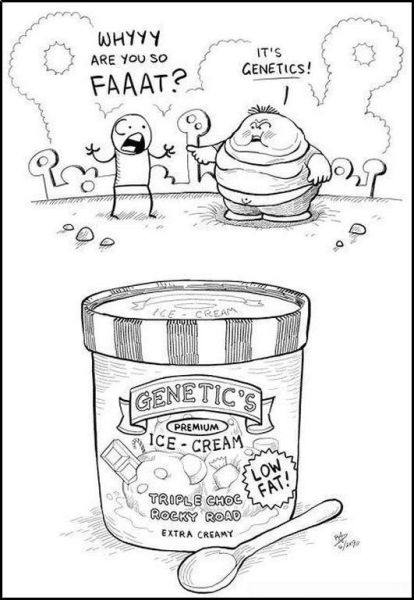 why are you so fat ice cream genetics